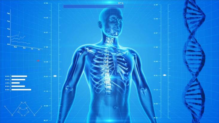 Mięśnie stabilizujące kręgosłup