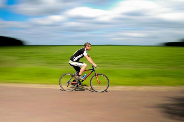 Anatomia treningu – ćwiczenia -część zasadnicza