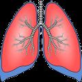 rehabilitacja oddechowa