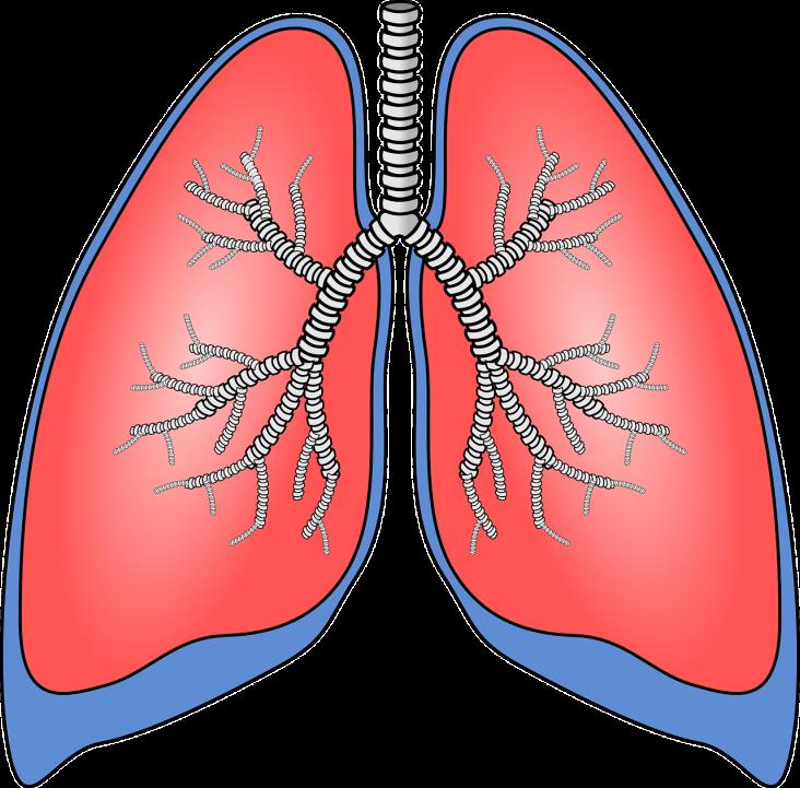 Dla kogo rehabilitacja oddechowa? Dowiedz się więcej